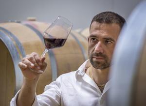 I vini dell'azienda agricola Spolert di Prepotto a Borghi d'Europa